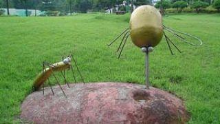 mosquito monument (από pavleas, 22/02/09)