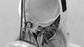 μύγα σηκώνει σπαθί (από xalikoutis, 10/02/09)