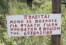 """""""Μα ναι κύριε ιδιοκτήτα μου, το θέλω το χωράφι, βοσκός είμαι - τί εννοείτε που είναι οι κατσίκες; αυτές που έχω εδώ να τις φυλάω δεν σου γεμίζουν το μάτι;"""" (από Galadriel, 27/02/09)"""
