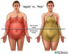Η διαφορά μεταξύ μηλόσχημου και αχλαδόσχημου (από poniroskylo, 13/03/09)