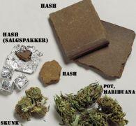 Εδώ βλέπουμε δείγματα χόρτου, σκου και τσόκο. (από AN21, 28/01/10)