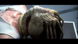 Αυτό δεν είναι χταπόδι, είναι alien facehugger! (από Jonas, 07/07/10)
