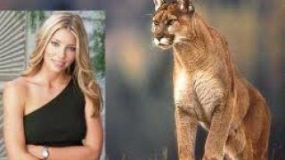 Το κούγκαρ ως γυναίκα και ως ζώο.  (από Khan, 18/03/11)