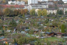 κοινοτικά μποστάνια στην Ελβετία (Βασιλεία) (από ironick, 30/10/11)