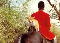 Αλεπού με πέταλα (από nikolaosvlas, 07/10/11)