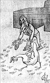 Αποτέλεσμα εικόνας για Η  ΚΟΤΑ του κων τσατσου