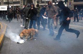 Από δακρυγόνα και χημικά δεν καταλαβαίνει Χριστό, πρώτος πάει να τα πιάσει! (από Cunning Linguist, 16/12/11)