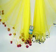 Το δόκιμο αθερινόδιχτο. (από Khan, 26/03/12)