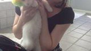 Το γατάκι της Στόγια (από Khan, 01/03/14)