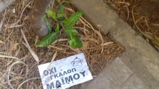 (από xalikoutis, 20/05/14)