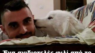 Με τον σκύλο- γκομενοπαγίδα (από Khan, 09/10/14)