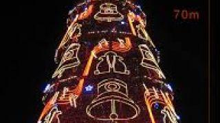 Αβραμόδεντρο 70 μέτρων στη Λισαβώνα. (από Khan, 24/12/14)