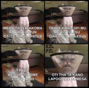 γάτα - λαμπόγυαλο